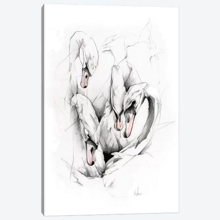 Swans Canvas Print #AMU36} by Alexis Marcou Art Print