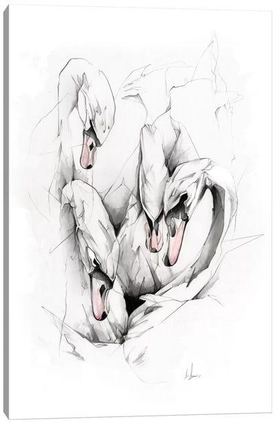 Swans Canvas Print #AMU36