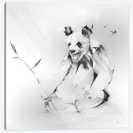 Bad Panda Canvas Print #AMU3} by Alexis Marcou Art Print