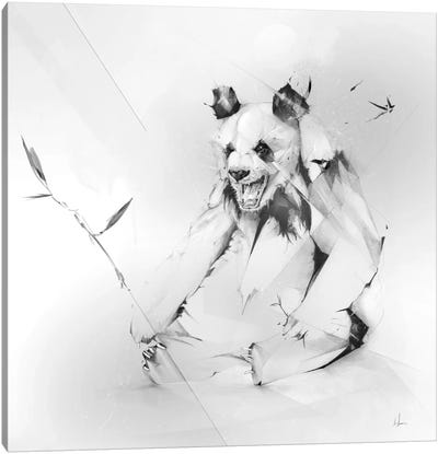 Bad Panda Canvas Art Print