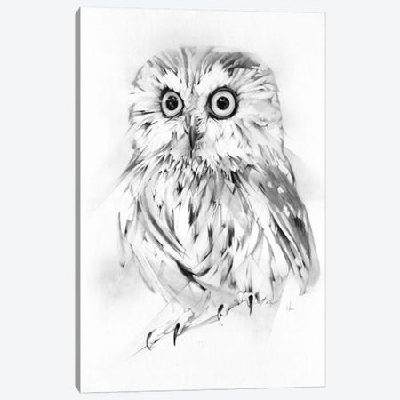 Wise Canvas Print #AMU40} by Alexis Marcou Art Print