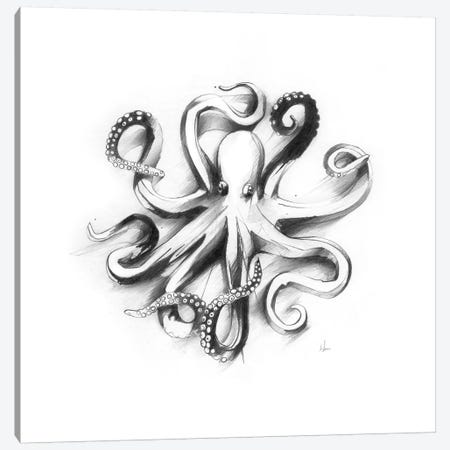 Flat Octopus Canvas Print #AMU45} by Alexis Marcou Canvas Art