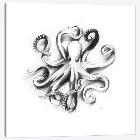 Flat Octopus Canvas Print #AMU45} by Alexis Marcou Canvas Art