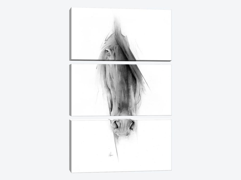 Horse 2023 by Alexis Marcou 3-piece Canvas Artwork