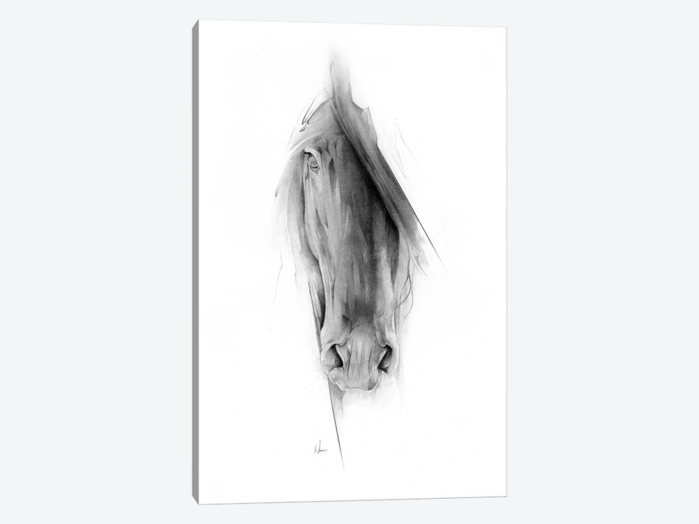 Horse 2023 by Alexis Marcou 1-piece Canvas Wall Art