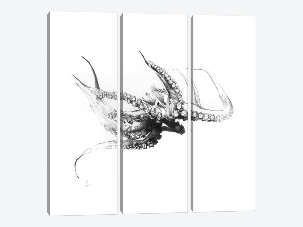 Octopus Rubescens by Alexis Marcou 3-piece Canvas Art Print