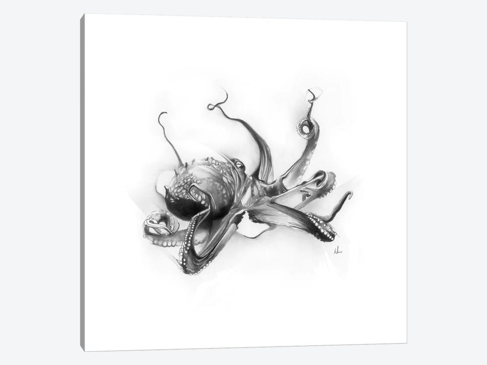 Pacific Octopus by Alexis Marcou 1-piece Canvas Artwork