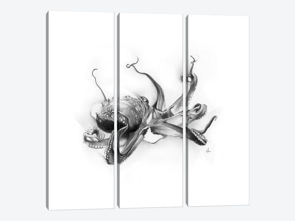 Pacific Octopus by Alexis Marcou 3-piece Canvas Wall Art