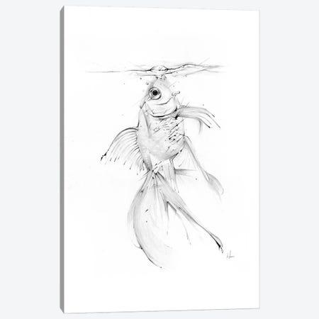 Fish Feast Canvas Print #AMU57} by Alexis Marcou Canvas Print