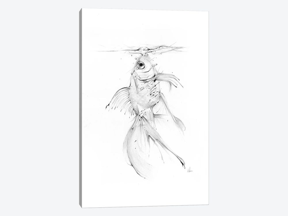 Fish Feast by Alexis Marcou 1-piece Canvas Wall Art