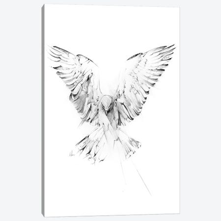 Phoenix Canvas Print #AMU63} by Alexis Marcou Art Print