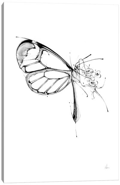 Butterfly Fuel Canvas Art Print