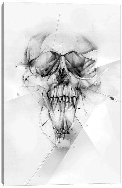 Cocaine Canvas Print #AMU8