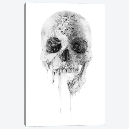 Crystal Skull Canvas Print #AMU9} by Alexis Marcou Canvas Art Print