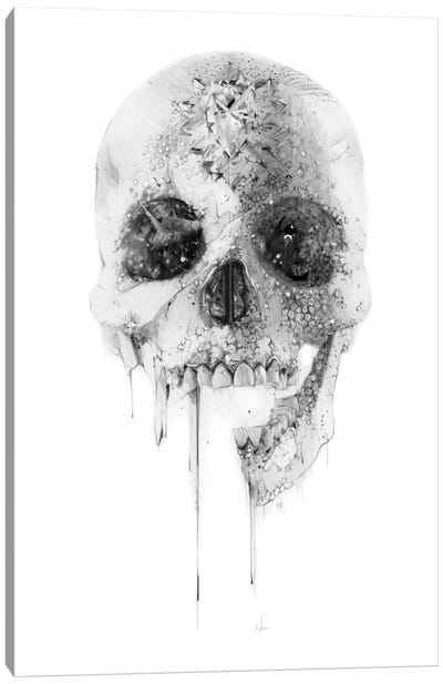 Crystal Skull Canvas Art Print