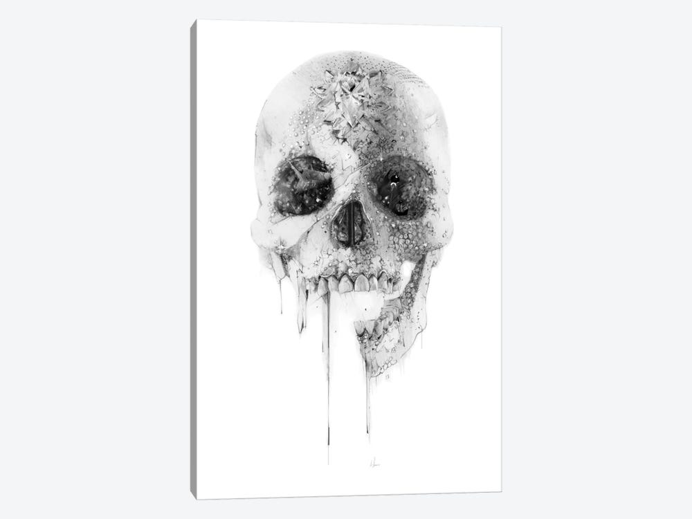 Crystal Skull by Alexis Marcou 1-piece Canvas Wall Art