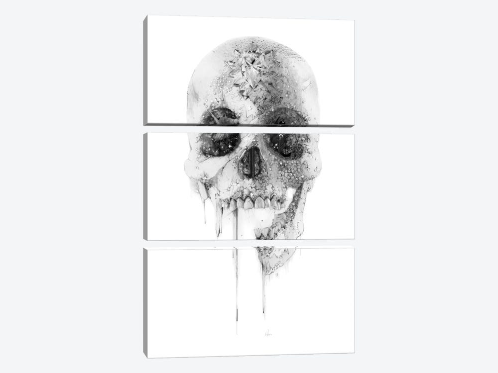 Crystal Skull by Alexis Marcou 3-piece Canvas Artwork