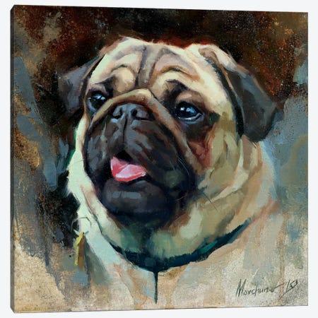 Pug Canvas Print #AMV12} by Alex Movchun Canvas Print