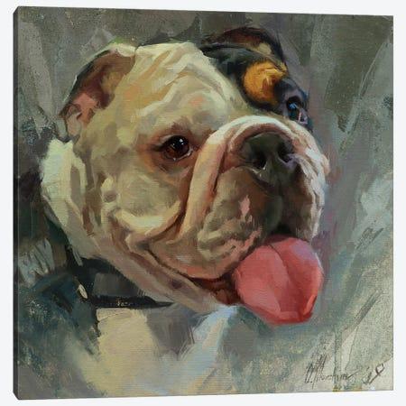 British Bulldog Canvas Print #AMV13} by Alex Movchun Canvas Print