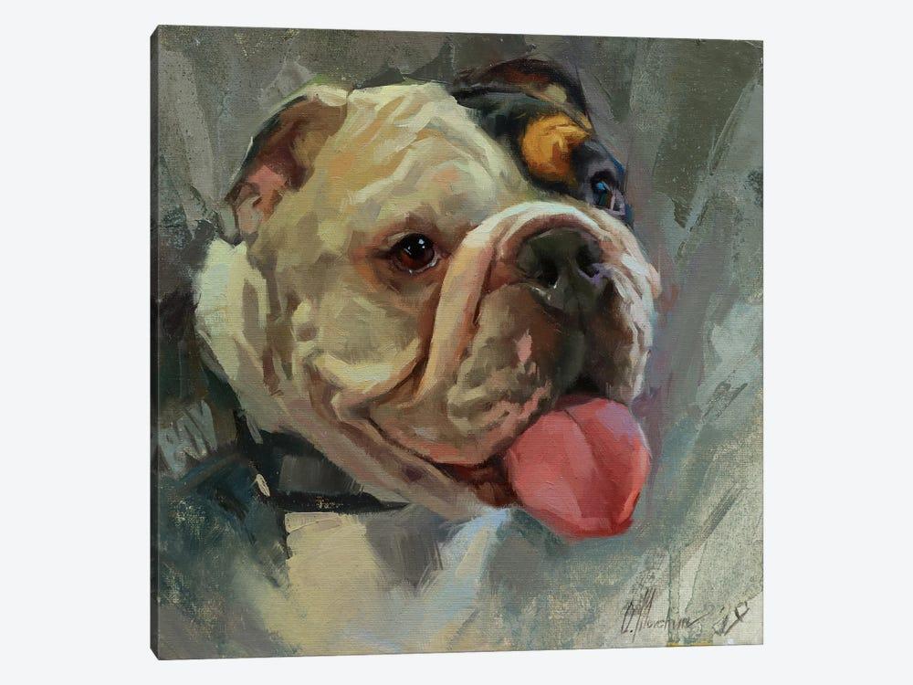 British Bulldog by Alex Movchun 1-piece Canvas Art