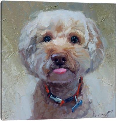 Little Cute Dog Canvas Art Print