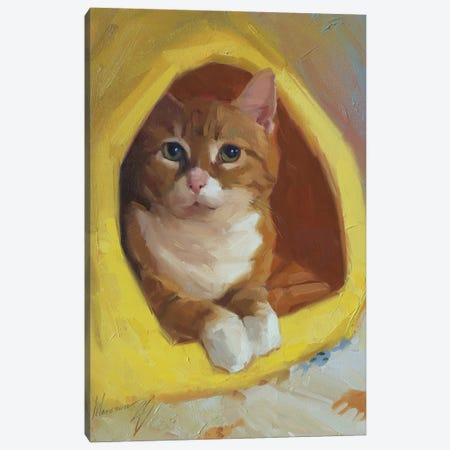 Red Cat Canvas Print #AMV16} by Alex Movchun Canvas Artwork