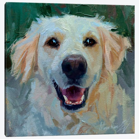 White Labrador Canvas Print #AMV17} by Alex Movchun Canvas Art
