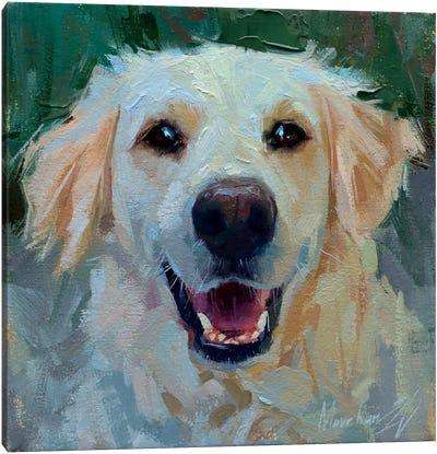White Labrador Canvas Art Print
