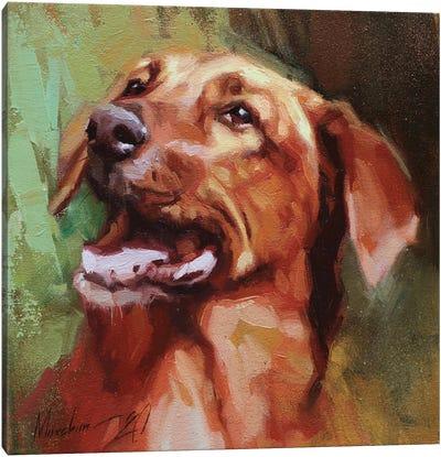 Happy Dachshund Canvas Art Print