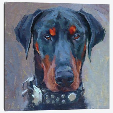 Doberman Canvas Print #AMV1} by Alex Movchun Canvas Wall Art