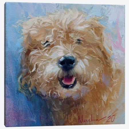 Curly Dog Canvas Print #AMV20} by Alex Movchun Canvas Wall Art