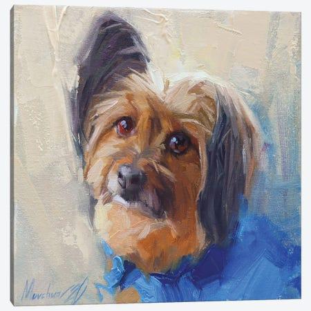 Yorkshire Terrier Canvas Print #AMV22} by Alex Movchun Canvas Wall Art