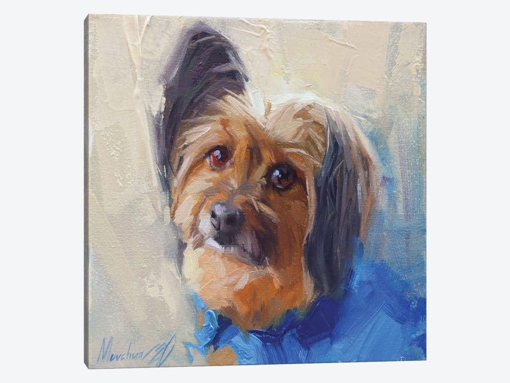 Yorkshire Terrier by Alex Movchun 1-piece Canvas Wall Art