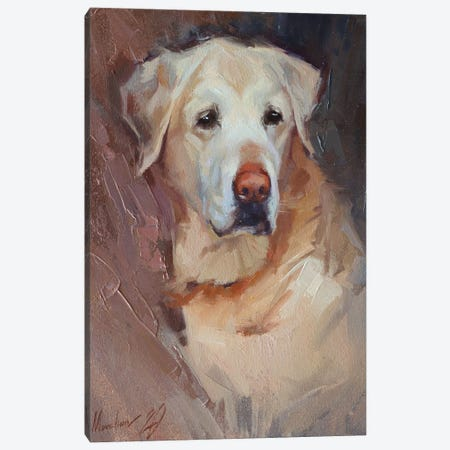 Yellow Labrador Canvas Print #AMV23} by Alex Movchun Canvas Wall Art