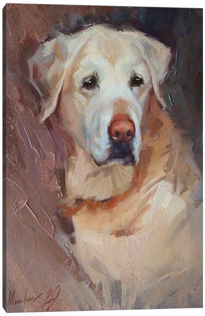 Yellow Labrador Canvas Art Print