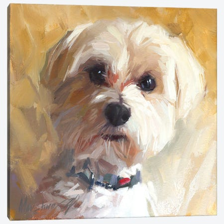 Little Dog Canvas Print #AMV24} by Alex Movchun Canvas Print