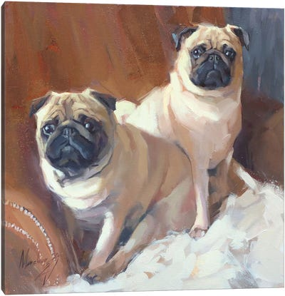 Two Pugs Canvas Art Print