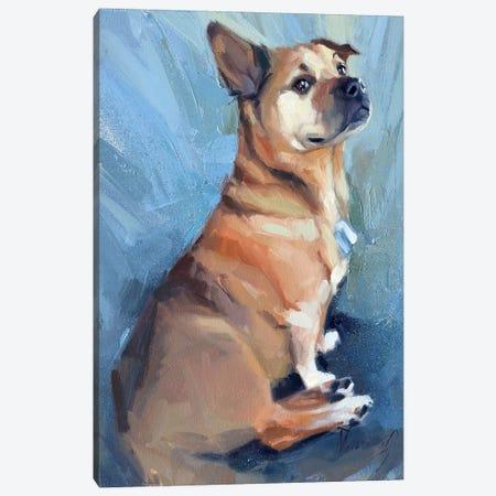 A Little Proud Dog Canvas Print #AMV27} by Alex Movchun Art Print