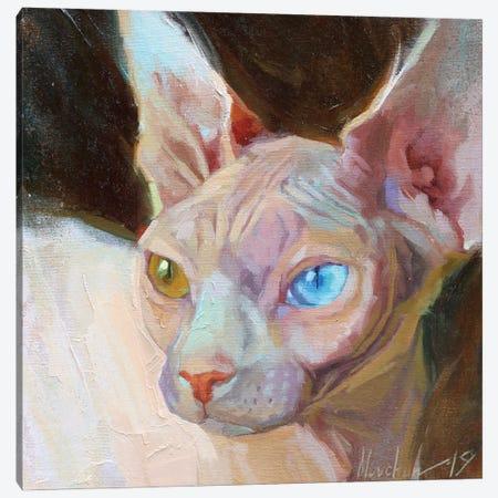 White Sphinx Canvas Print #AMV6} by Alex Movchun Canvas Art Print