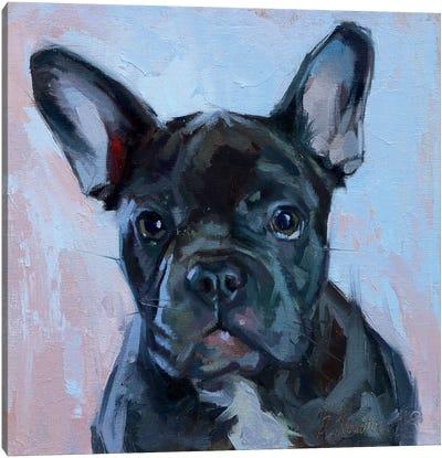 Black Bulldog Canvas Art Print