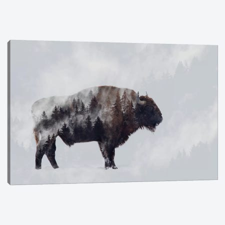 Bison - Double Exposure Canvas Print #ANB3} by Angyalosi Beáta Canvas Art