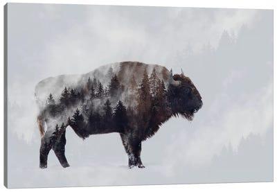 Bison - Double Exposure Canvas Art Print