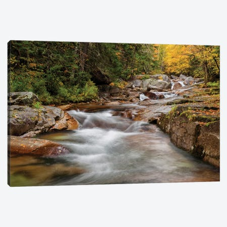 USA, New Hampshire, White Mountains, Fall at Jefferson Brook Canvas Print #ANC12} by Ann Collins Canvas Wall Art