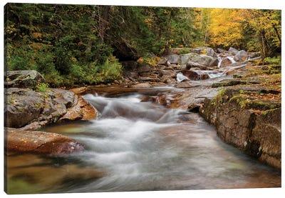 USA, New Hampshire, White Mountains, Fall at Jefferson Brook Canvas Art Print