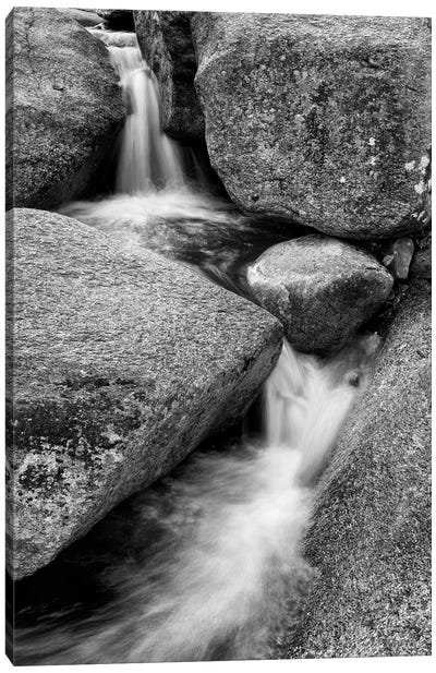 USA, New Hampshire, White Mountains, Lucy Brook flows past granite rock I Canvas Art Print