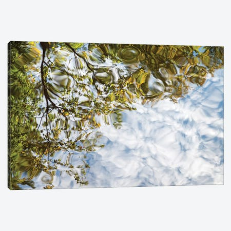 USA, New Hampshire, White Mountains, Reflections abstract Canvas Print #ANC19} by Ann Collins Canvas Art