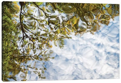 USA, New Hampshire, White Mountains, Reflections abstract Canvas Art Print