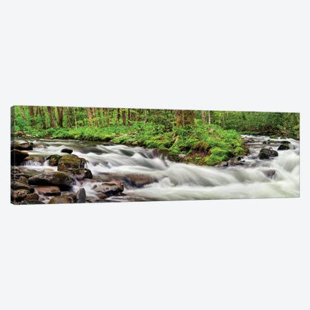 USA, North Carolina, Great Smoky Mountains National Park, Straight Fork 3-Piece Canvas #ANC24} by Ann Collins Canvas Wall Art