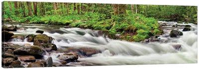 USA, North Carolina, Great Smoky Mountains National Park, Straight Fork Canvas Art Print