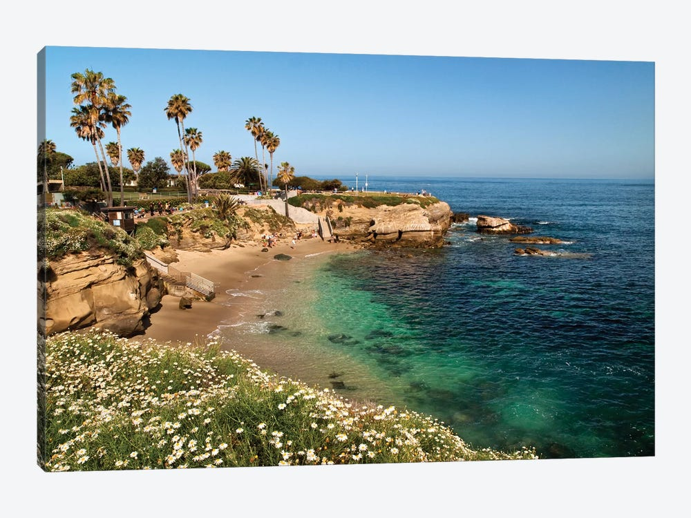 USA, California, La Jolla, Clear water on a spring day at La Jolla Cove by Ann Collins 1-piece Art Print